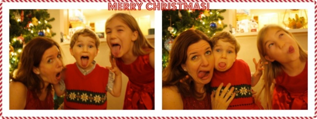 Merry Christmas silly pic